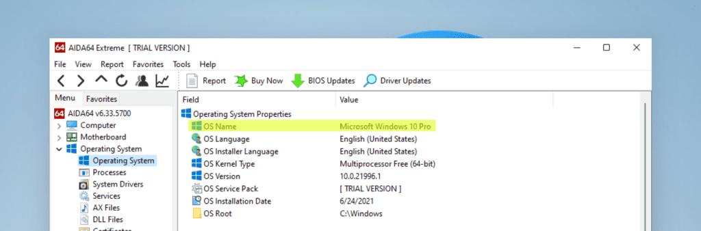Windows 11 OS interface